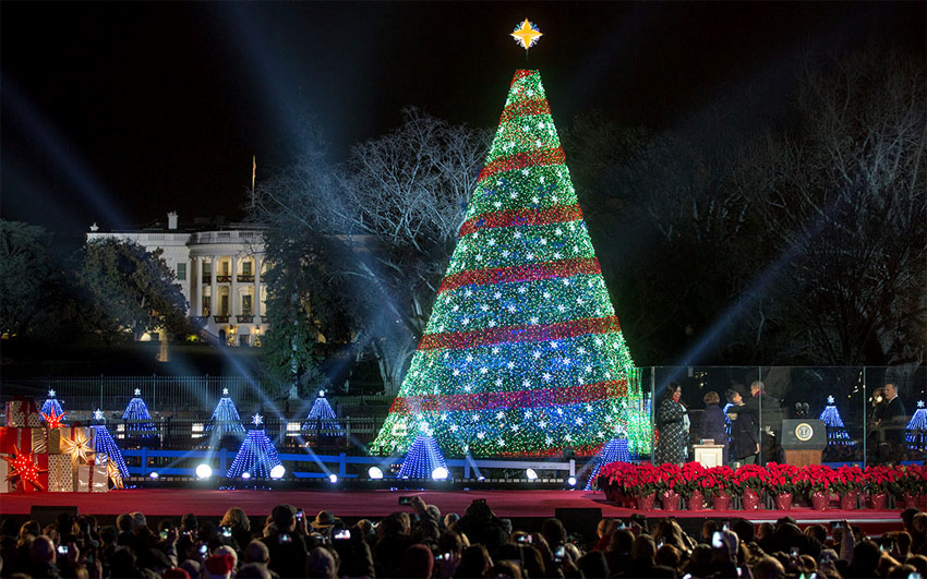 national christmas tree the white house 2017 - White House Christmas Decorations